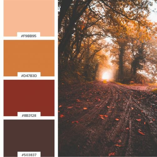 Brkich Design Group Color Palette for Logo / Graphic Design